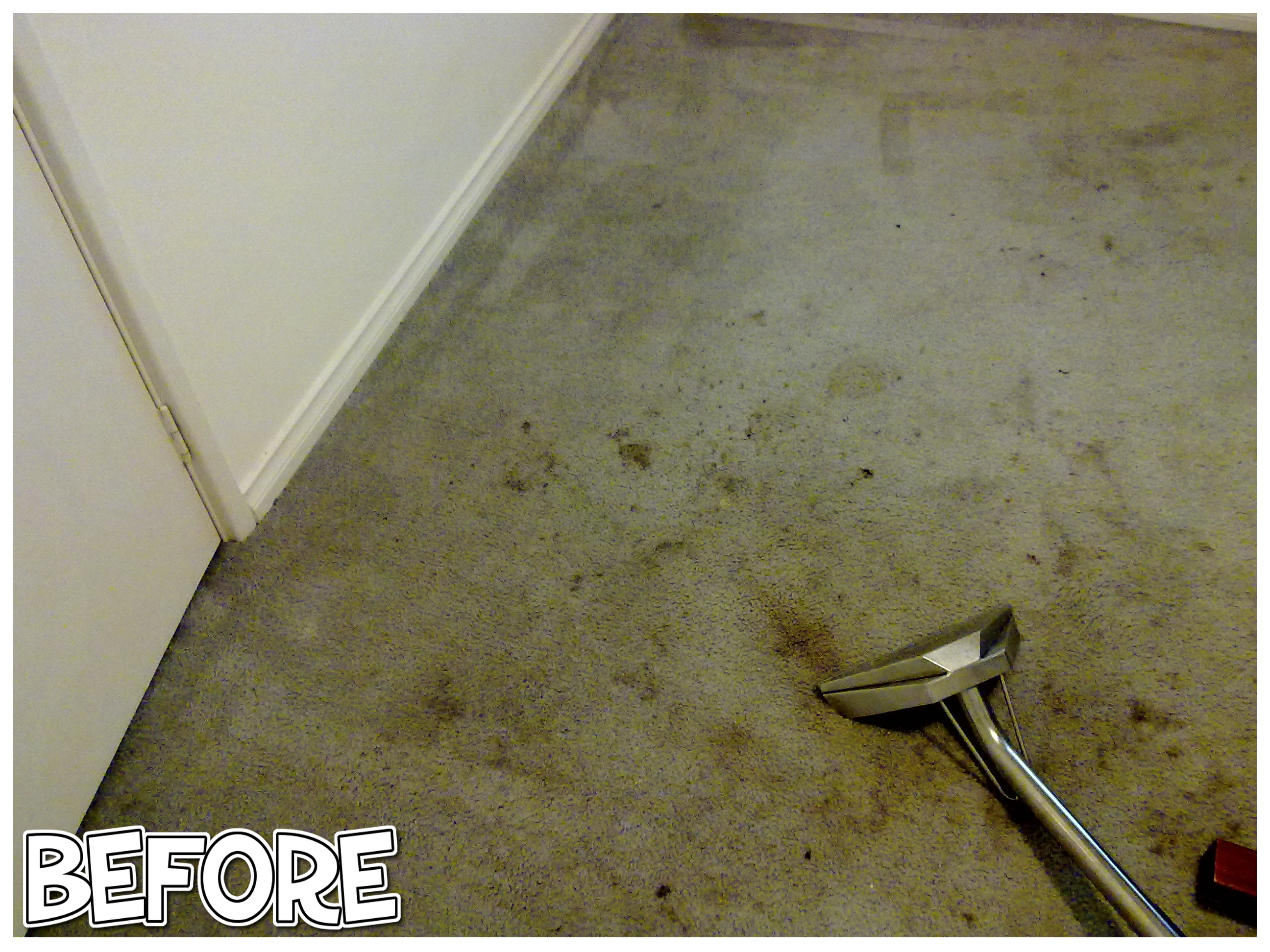 carpet cleaning watermans bay