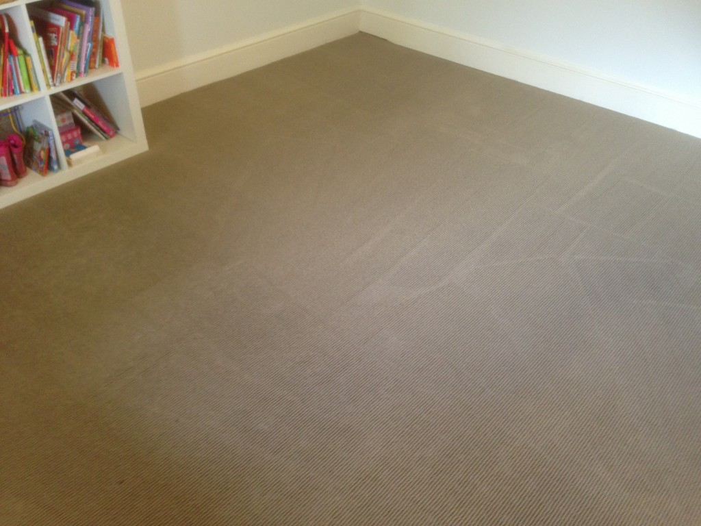carpet cleaning applecross after
