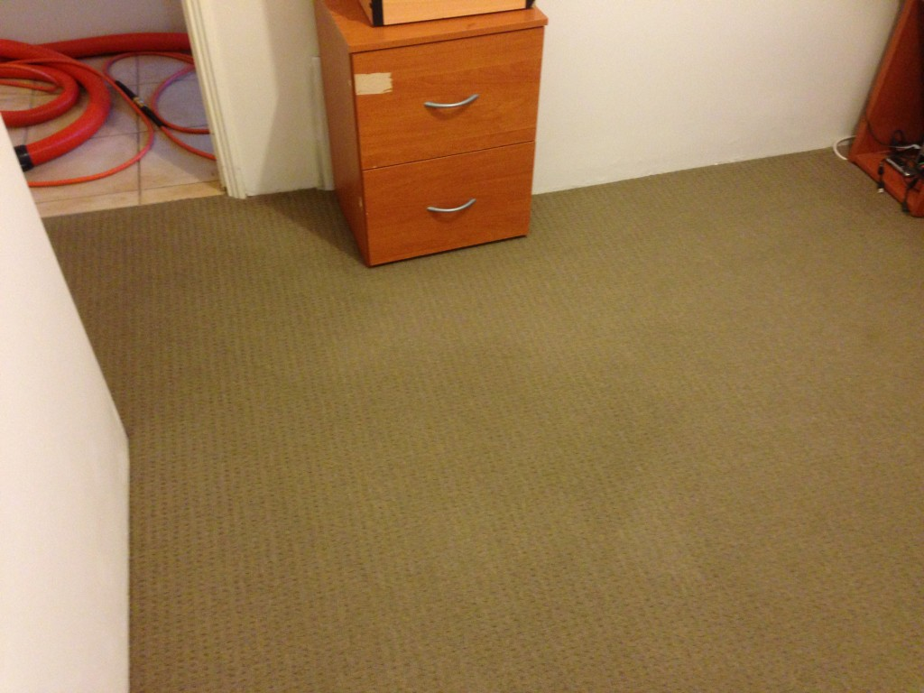 carpet cleaning woodvale after