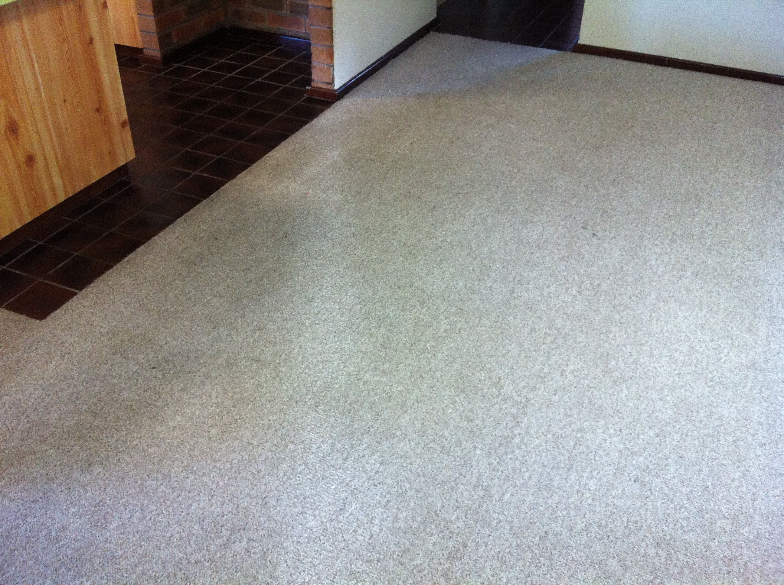 carpet cleaning scarborough after