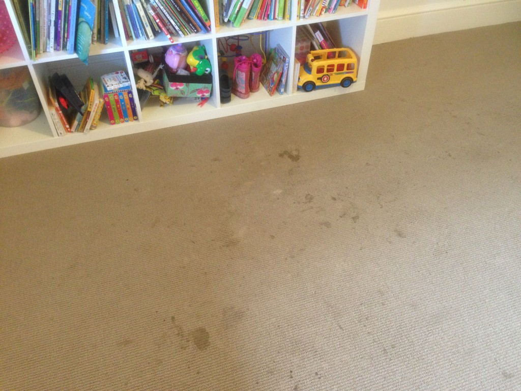 carpet cleaning applecross