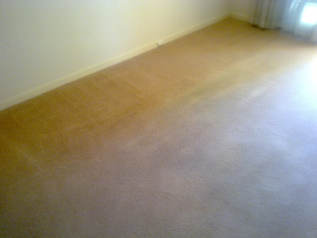 carpet cleaning churchlands after